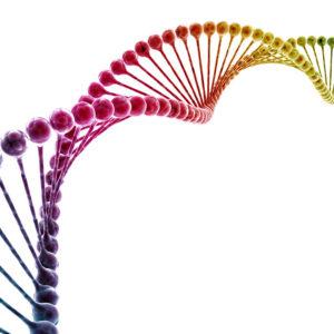 Test Genetico Glutine-Lattosio-Microbiota